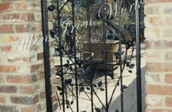 iron-climbing-rose-courtyard-gate-birmingham-al